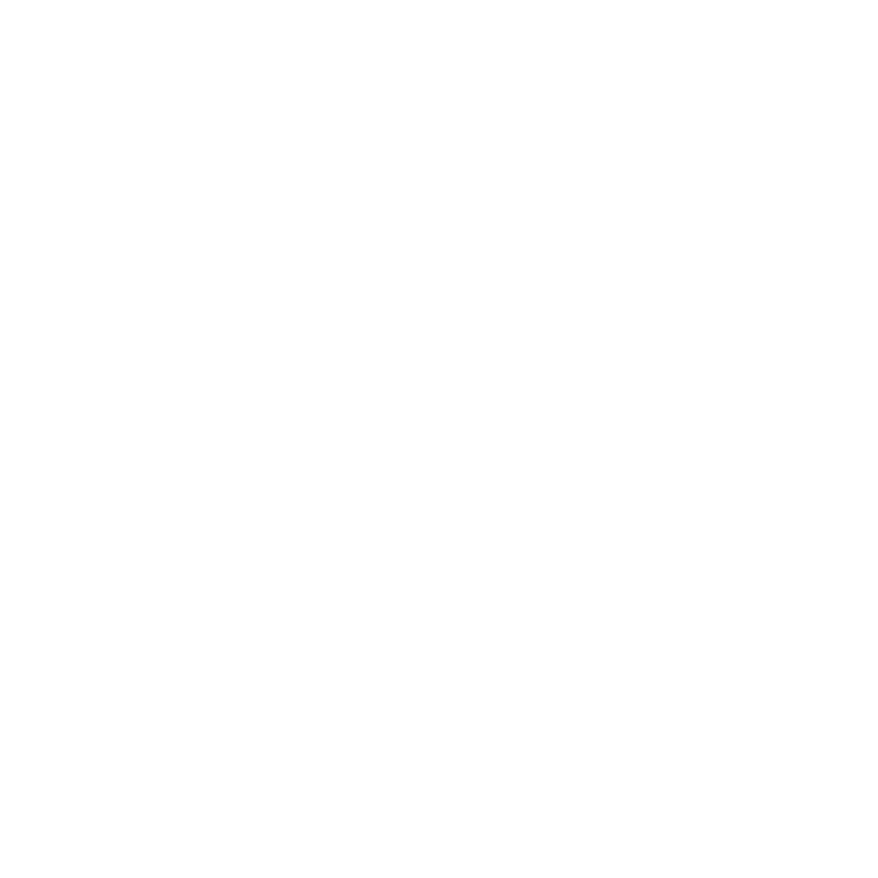 we are a professional full service marketing agency